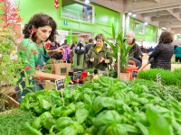 Biolife, il biologico conquista Bolzano