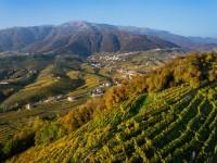 Panorama del territorio di Valdobbiadene