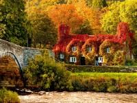 La verde Irlanda si tinge con i colori dell'autunno