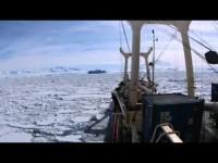 #RottAntartide2106: Il regno dei ghiacci (#10)