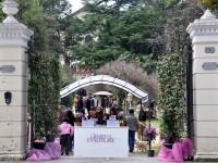 La mostra Giardini d'Autore al Parco Fellini di Rimini