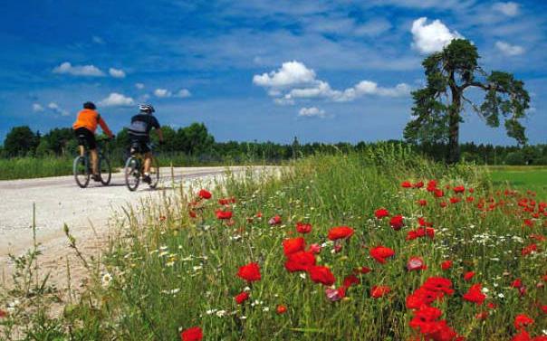 Ride to Moscow: in bicicletta per aiutare i bambini russi