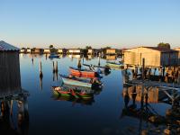 Parco Delta del Po, concorso fotografico ne valorizza la bellezza