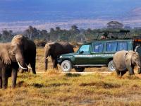 Milano, il Kenya porta il safari in centro città