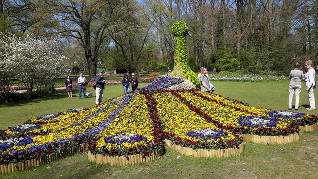 Tappeto Floreale Bruxelles : Belgio quando il tappeto è fatto di fiori e occupa tutta la