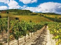Friuli Venezia Giulia si riconferma meta turistica Top del 2016