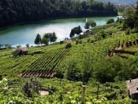 Scoprire il Trentino con i Viaggi di Gusto