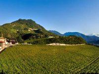 """Il Trentino Alto Adige ospita """"Cantine Aperte"""""""