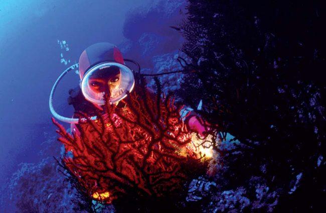 Ustica, perla del Mediterraneo con la passione per la subacquea
