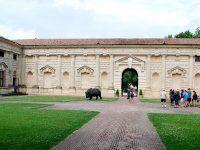 Rinoceronte a Palazzo Te, opera di Davide Rivalta