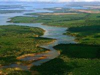 L'Argentina ristruttura il parco naturalistico Esteros del Iberá