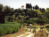 Kolymbetra: giardino degli dei