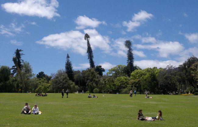 Madeira, Parco di Santa Catarina