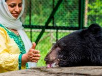 India: Wldlife Soa Sloth Bear Rescue Center