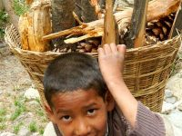 Harsil, un ragazzino trasporta della legna (foto: Aldo Pavan © Mondointasca)