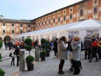 Mostra Mercato del Tartufo bianco (ph D. Bragaglia © Mondointasca)
