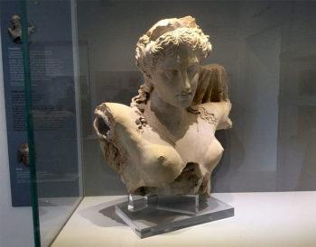 Daunia Busto di Proserpina