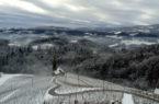 Stiria Slovenia-un-cuore-tra-le-vigne