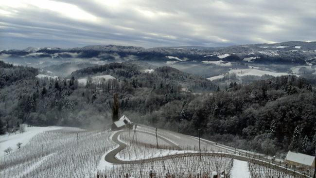Stiria, un cuore tra le vigne