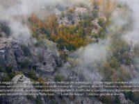 La biodiversità del Parco dell'Aspromonte si ammira al museo