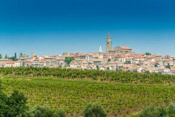 Viaggi golosi Istria-Destination-Buje-Buje