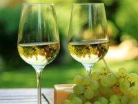 Viaggio nel bicchiere: Gambellara e i vini vulcanici