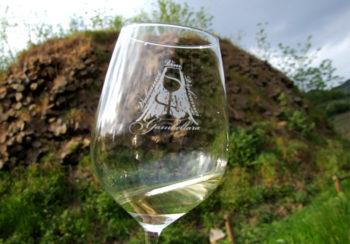 Gambellara vino-doc