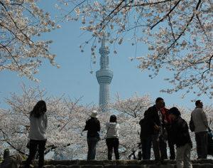 Tokyo Sky Tree ©TCVB