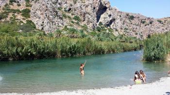 Creta le-Palme-alla-spiaggia-di-preveli