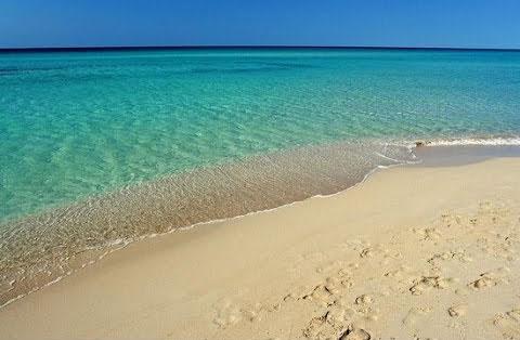 spiagge Punta prosciutto-Puglia