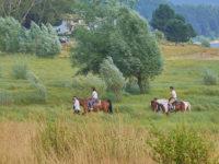 Lorica, passeggiate a cavallo (foto: emilio dati © 2018-Mondointasca.it)