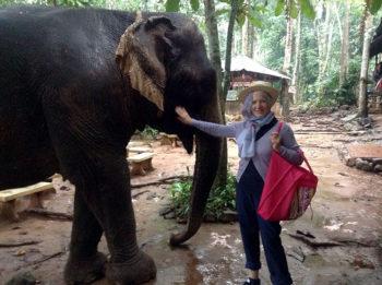 AyuttayaThailandia-isola-elefanti