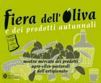 Tour di gusto Coriano-Fiera-Oliva