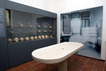 San Servolo sala-anatomia
