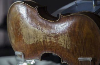 Violino Piccolo Studio del fondo-del violino Fondazione Bracco autore Aedo