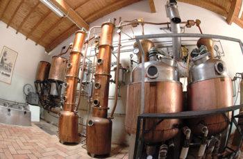 Alambicchi distilleria