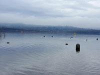Sito palafitticolo di Bodio Lomnago nel lago di Varese (foto: Paolo Gamba © Mondointasca.it)