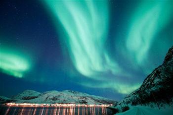 Allergie Tromso