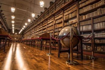 Pavia rossa Biblioteca-Universitaria
