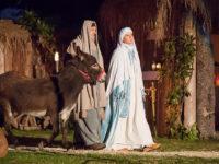 Giuseppe, Maria e l'asinello