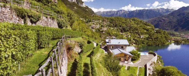 Territorio e sapori. Vini e formaggi lombardi della Valcamonica
