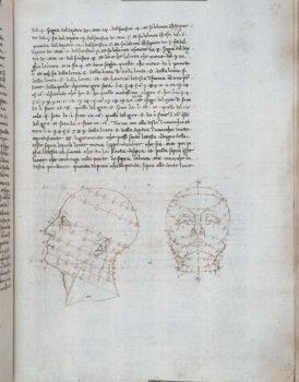 Piero della Francesca De Prospectiva Pingendi Reggio,-Panizzi