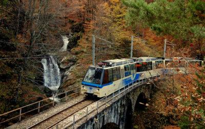 il-treno-del-foliage-ottobre