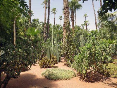 amiche Jardin Majorelle foto wipedia