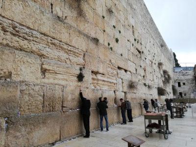 Giaffa Gerusalemme Il Muro del Pianto