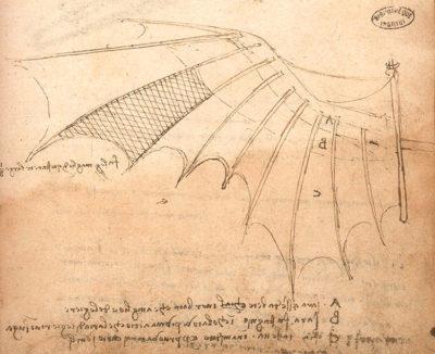 Leonardo da Vinci: Vision 01 Ala della macchina volante con rivestimento pannicolato a imitazione delle ali di pipistrello