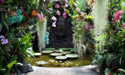 Fiori e colori Giardini La Mortella