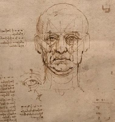 Leonardo disegnare il futuro Studi sul corpo umano