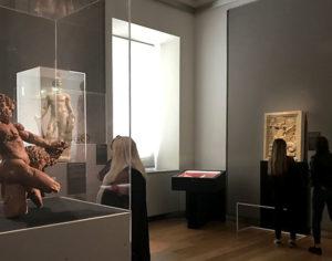 """""""Leonardo disegnare il futuro"""", Musei Reali Torino"""