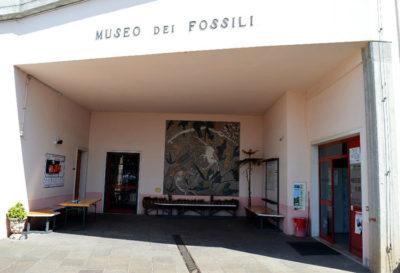 Bolca Museo dei fossili